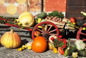 Fuori di Zucca a Santa Maria Maggiore - Sagre autunnali
