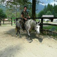 Cavalli alla Cascina La Presacia