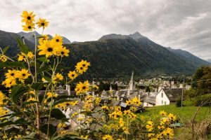 Colori in Val Vigezzo - Sullo sfondo Craveggia e Santa Maria Maggiore