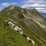 Parco Val Grande - Il Tignolino