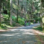 Pedalare nel bosco lungo la ciclo-pedonale della Val Vigezzo
