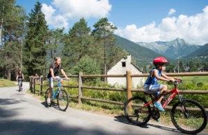 In bici nella pineta della Val Vigezzo