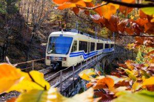 Treno del Foliage - Ferrovia Vigezzina-Centovalli